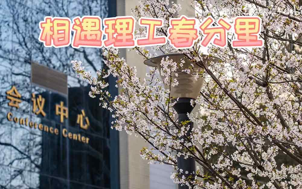 【相约理工春分里】一起来武汉理工欣赏绝美樱花吧!