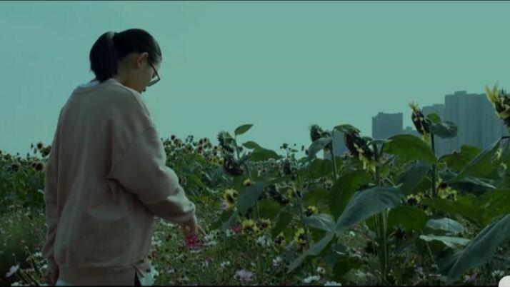 视频:《挣脱》