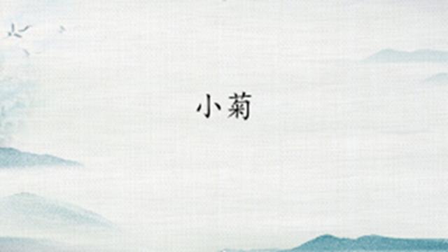 网文:小菊